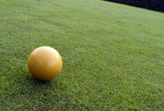 Yellow ball on the golf course Royalty Free Stock Images