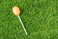 Yellow ball lollipop on the grass Stock Images
