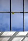 Yellow balloon royalty free stock photos