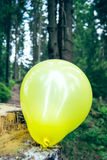 Yellow balloon on tree trunk Royalty Free Stock Image