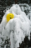 Yellow balloon. In the winter forest Royalty Free Stock Photography