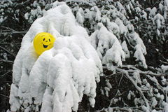 Yellow balloon. In the winter forest Royalty Free Stock Images