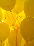Yellow Balloons. Bunch of Yellow Air Balloons Stock Photography