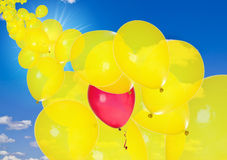 Yellow balloons with one red in sunny sky Stock Photos