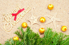 Yellow balls, starfish and fir tree on the sand Royalty Free Stock Images