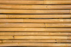 Yellow Bamboo fence background texture Stock Image