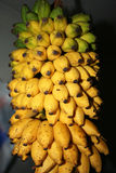 Yellow banana Stock Image