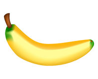 Yellow banana. Realistic vector illustration stock illustration