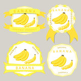The yellow banana. Abstract vector illustration logo for whole ripe fruit yellow banana with green stem leaf cut sliced.Banana drawing consisting of tag label Stock Photography