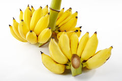 Yellow banana bunch Royalty Free Stock Photography