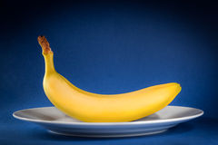 Banana. Yellow banana on white plate over blue background Royalty Free Stock Photos