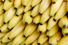 Yellow Bananas. A pile of yellow bananas for sale in the market Royalty Free Stock Photo