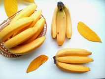 Yellow bananas in basket and leaves Royalty Free Stock Images