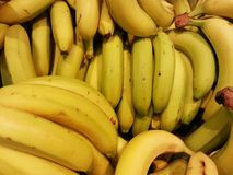 The yellow bananas in the box, Fruits , Fresh product Stock Photography