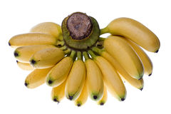 Yellow Bananas Isolated Stock Photography