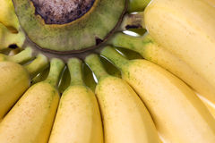 Yellow Bananas Isolated Royalty Free Stock Photo