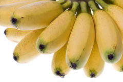 Yellow Bananas Isolated Royalty Free Stock Image
