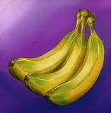 Yellow bananas on violet background. A bung of three yellow bananas on violet background. Hand drawn pencil sketch, colored Stock Images