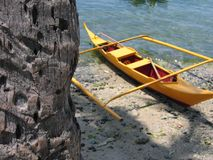 Yellow banka outrigger canoe palm tree philippines. Small banca beached next to a palm tree on sabang beach puerta galera the philippines stock photos