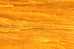 Yellow bark Stock Image