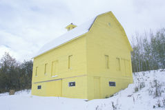 Yellow barn in snow, MI Royalty Free Stock Image