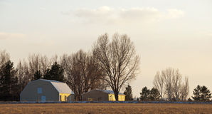 Yellow Barns in Golden Light of Sunset Royalty Free Stock Photography