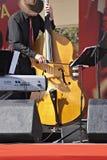 Yellow Bass Royalty Free Stock Image
