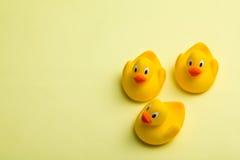 Yellow bath ducks royalty free stock photo