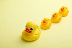 Yellow bath ducks Stock Photo