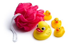 Yellow bath ducks and bath puff Stock Image