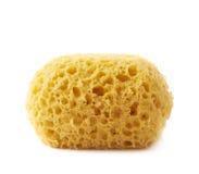 Yellow bathing sponge isolated Royalty Free Stock Photography