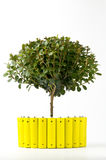 Yellow batteries and a green tree Royalty Free Stock Photos