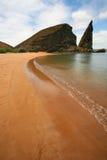 Yellow Beach. On Galapagos islands Stock Photos
