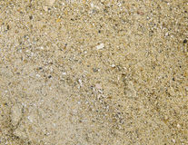 Yellow beach sand with black speckles Royalty Free Stock Photo