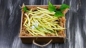 Yellow bean, organic vegetables from farmer market, farm fresh beans in a wooden box, vegan food concept. top view copy space.  royalty free stock photo