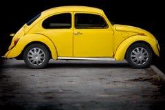 Free Yellow Beatle Stock Photography - 8006312