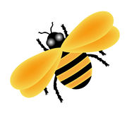 Yellow Bee Stock Photo