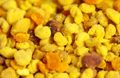 Yellow bee pollen Stock Photo
