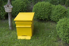 Yellow beehive Royalty Free Stock Photo