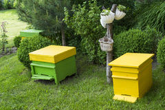 Yellow beehives Stock Image