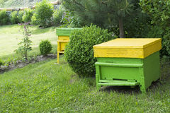 Yellow beehives Stock Photography