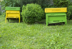 Yellow beehives Stock Photo