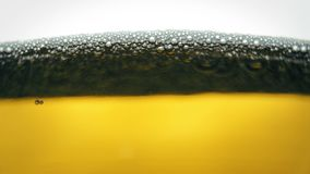 Yellow beer close up shot .Pouring beer with bubbles and foam in glass.  stock footage