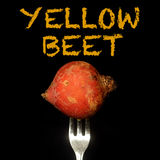 Yellow beet on a fork Stock Photos