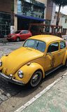 The yellow beetle royalty free stock photos