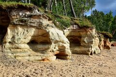 Free Yellow-beige Rocks On The Beach Royalty Free Stock Image - 170906316