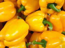 Yellow Bell Pepper. Bright yellow bell pepper Western Division sales in the market Stock Photography