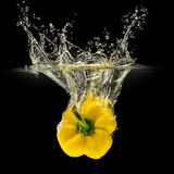 Yellow bell pepper falling in water on black Royalty Free Stock Photo