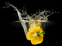 Yellow bell pepper falling in water with splash on black background Stock Photos