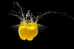 Yellow bell pepper falling in water with splash on black background Stock Images